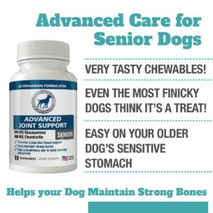 Advanced joint support glucosamine and chondroitin for dogs