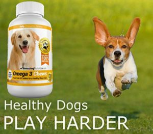 Amazing Nutritionals omega 3 for dogs