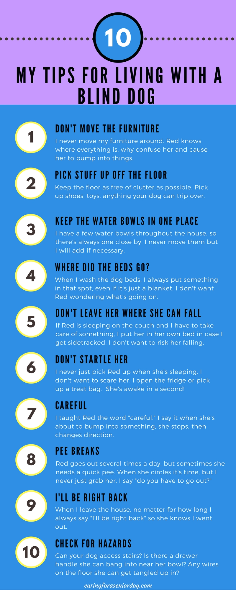 Infographic tips