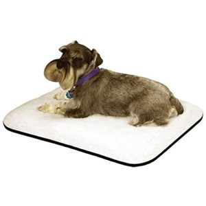 Orthopedic Dog Bed With Magnets