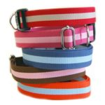 Harry Barker Eco Friendly Eton Collar