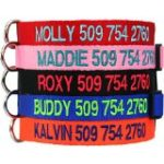 Custom Embroidered Dog Collars