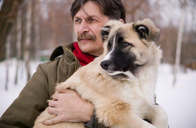 senior dog care resource page