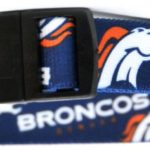 licensed NFL dog collar