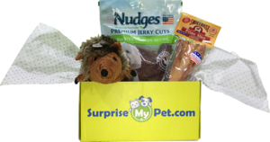 Surprise My Pet Package