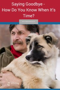 when is it time to say goodbye to your dog
