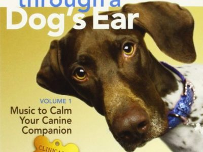 Through a Dog's Ear Product Review
