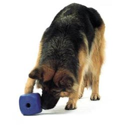 Buster Food Cube toy for blind dogs