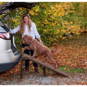 Free Standing Pet Gear Pet Ramp