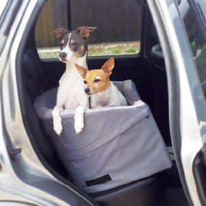 K&H Manufacturing Booster Bucket Seat with two dogs