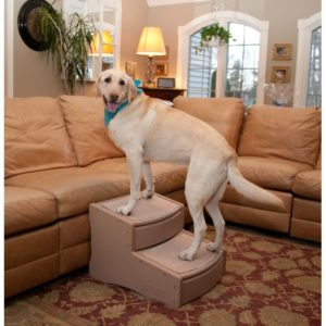 Pet Gear Easy Step II Extra Wide Pet Stairs, 2-step