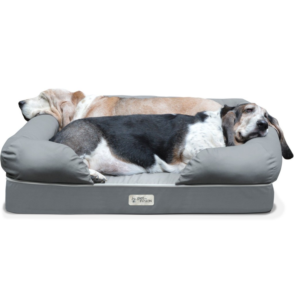 Petfusion Dog Lounge And Bed Review