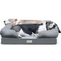 PetFusion Dog Lounge and Bed