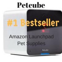 petcube-header-image