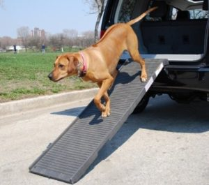 Petstep PetSTEP Folding Pet Ramp