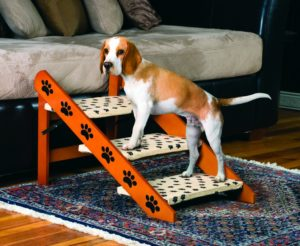 convertible pet stairs and ramp