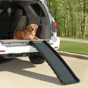 folding pet ramp