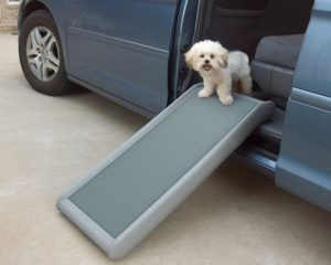 2 things you must know about dog stairs and ramps