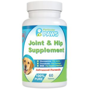 Joint and hip supplement with glucosamine and chondroitin
