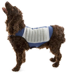cooling dog jacket
