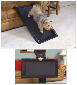 Smart Ramp Jr dog ramp
