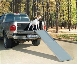 deluxe xl telescoping dog ramp