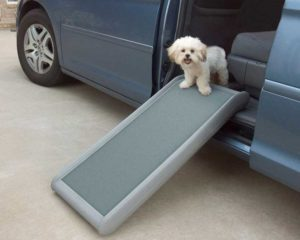half ramp II dog ramp