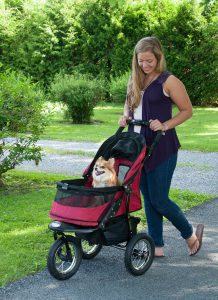 ef42e8301da Pet Gear Jogger Stroller  Review - Caring for a Senior Dog