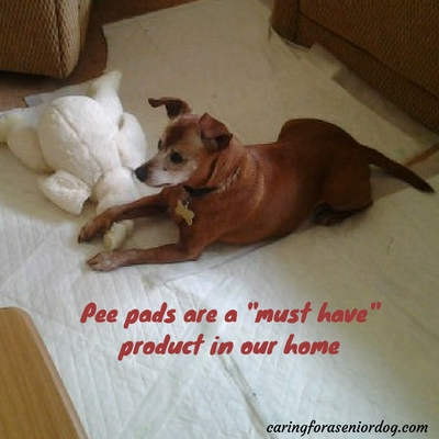 why you really need pee pads