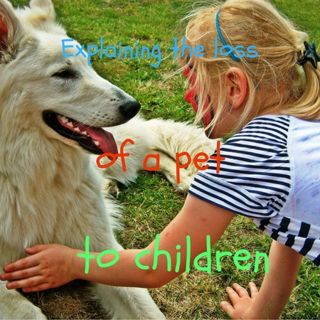 explaining the loss of a pet to children
