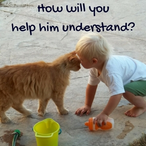 how to explain the loss of a pet to children