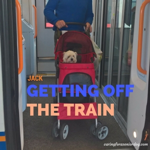 Jack getting off the train in a pet stroller