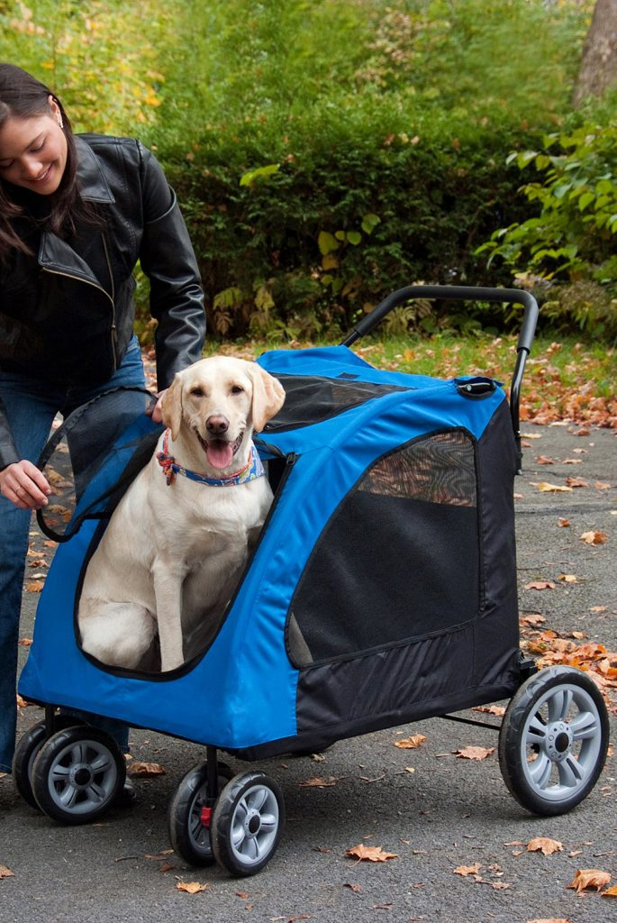 Pet Gear Expedition Pet Stroller Review
