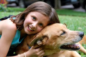 explaining pet loss to children
