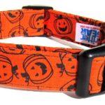 pumpkin-collar