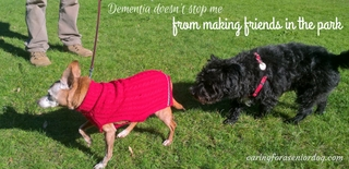 I suffer from dementia in dogs