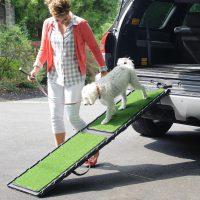 gen7pets dog ramps