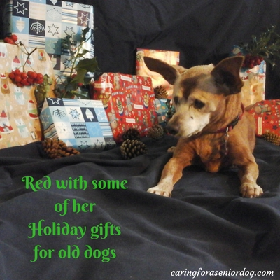 Red's holiday gift guide for old dogs