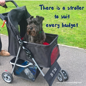 tips for finding the right pet stroller