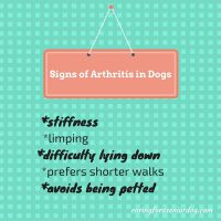 signs of arthritis in dogs