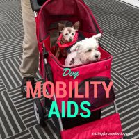 dog mobility aids