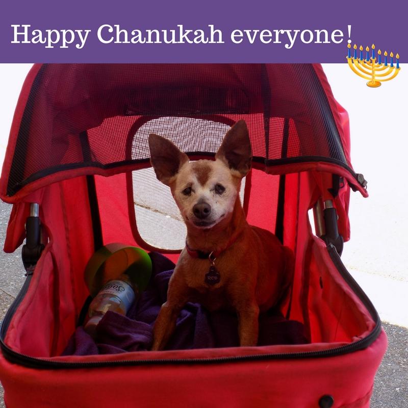 Happy Chanukah everyone