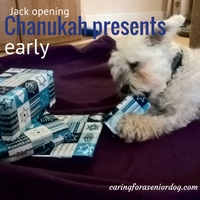 jack-opening-chanukah-presents-early