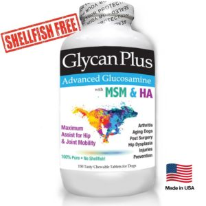best vets brand glycan plus glucosamine