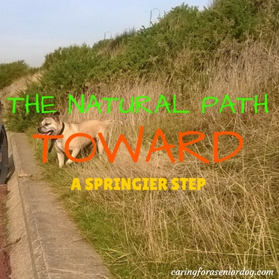 the natural path toward a springier step