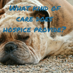What kind of care does hospice provide