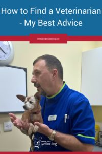 how to find a veterinarian