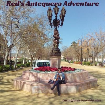 Reds Antequera Adventure