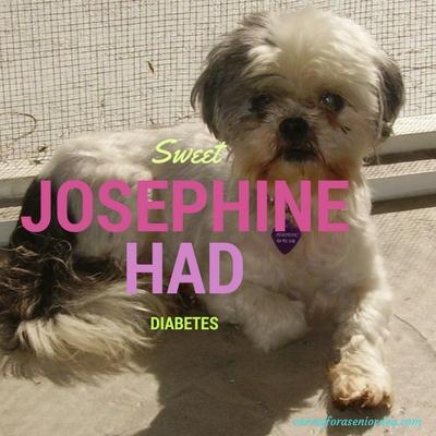 Josephine had diabetes