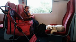 Red on a day trip with us on the train